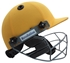 Picture of Gold Yellow Revolution Cricket Helmet by Cricket Equipment USA