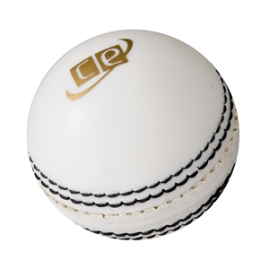 learn how to bowl a cricket ball
