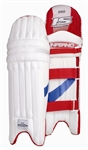 Picture of Inferno 350 Cricket Batting Pads by Ihsan