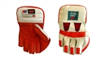 Picture of ACE 606 Wicket Keeping Gloves by Ihsan
