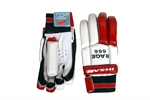 Picture of IS Cricket Batting Gloves RAGE 666 By Ihsan