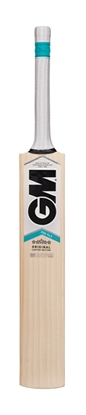 Picture of Cricket Bat English Willow SIX6 F4.5 DXM 303 TTNOW  by Gunn & Moore