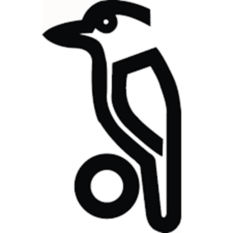 Official Kookaburra Stockist & Retailer in USA