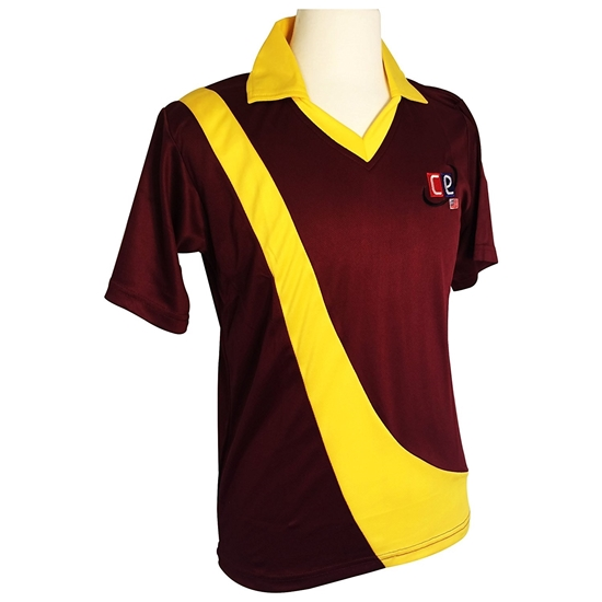 Picture of Colored Cricket Uniform West Indies - shirt