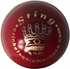 Sting Cricket Ball Main Image