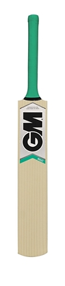Maxi GM Kashmir Willow Cricket Bat Front