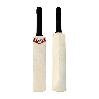 Picture of CE Mini Cricket Bat for Memorable Signs Autographs Size 16 inch X 2.5 Inch